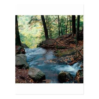 川のバターミルクの滝のデラウェア州ギャップニュージャージー ポストカード