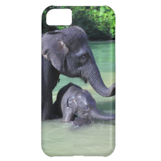 川の母およびベビー象 iPhone5Cケース