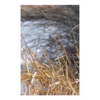 川の草 便箋