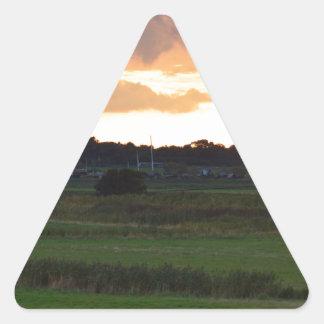 川のBlytheのはんらん原 三角形シール