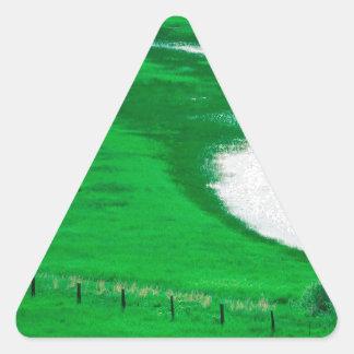 川フンボルトネバダ 三角形シール