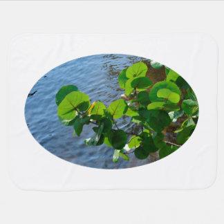 川上の海のブドウの葉はフロリダの自然を植えます ベビー ブランケット