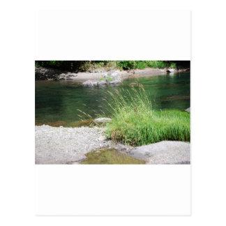川 ポストカード