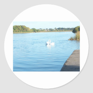 川Corribの白鳥 ラウンドシール