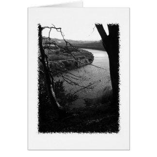川Taw。 白黒。 カード