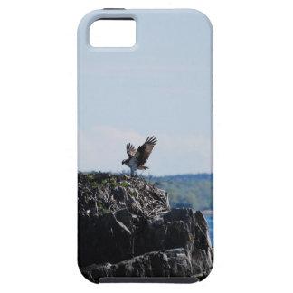 巣のミサゴ iPhone SE/5/5s ケース