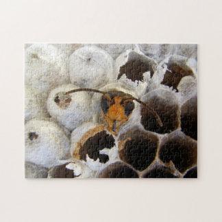 巣の写真のパズル及びギフト用の箱から現れているスズメバチ ジグソーパズル