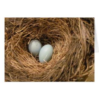 巣の挨拶状のロビンの卵 カード