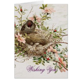 巣を持つヴィンテージの鳥 カード