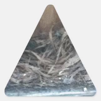 巣箱の巣 三角形シール