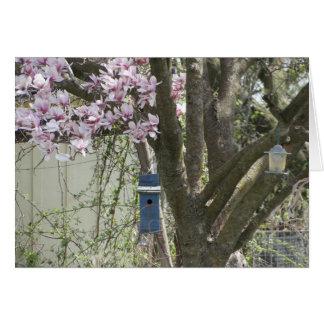 巣箱及びチューリップ木、春 カード