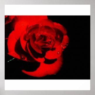 巨大で赤い花のキャンバスのプリント ポスター