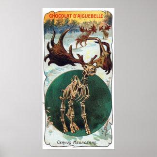 巨大なアイルランドのシカの有史以前の動物の旧式なプリント ポスター