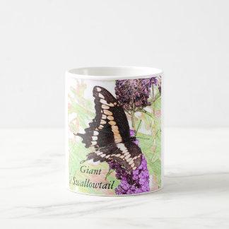 巨大なアゲハチョウの蝶スケッチのマグ コーヒーマグカップ