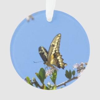 巨大なアゲハチョウの蝶 オーナメント