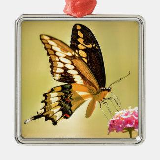 巨大なアゲハチョウの蝶 メタルオーナメント