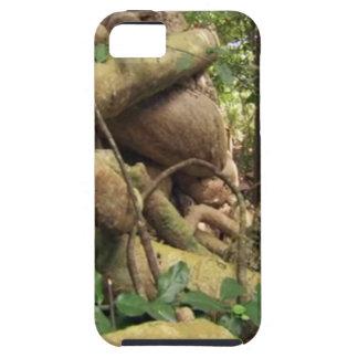 巨大な木はザンジバルの島礁のおもしろいに旅行を定着させます iPhone SE/5/5s ケース