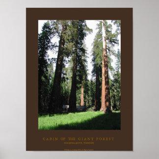 巨大な森林の小屋 ポスター