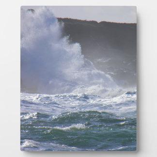 巨大な波 フォトプラーク