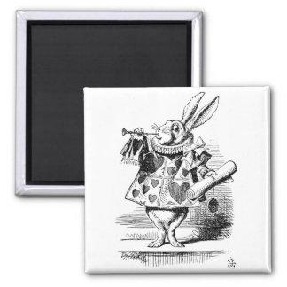 布告者として服を着る白いウサギ マグネット