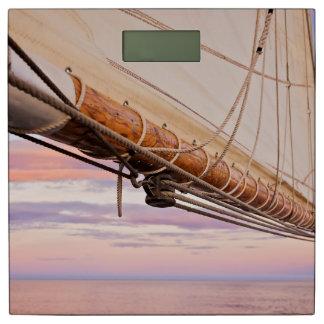 帆およびロープのクローズアップ|メイン、キャムデン 体重計