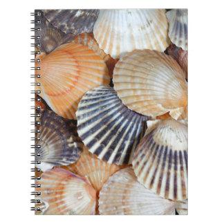 帆立貝貝 ノートブック