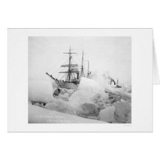 帆船Nome、アラスカ1904年 カード