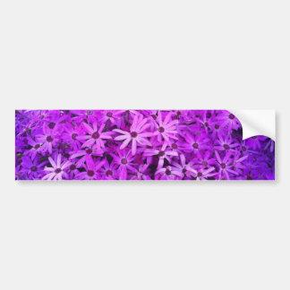 希望のための紫色の野生の花 バンパーステッカー