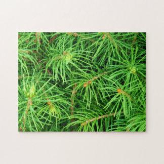 常緑の木 ジグソーパズル