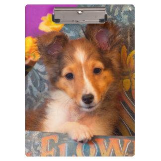 帽子箱のシェットランド・シープドッグの子犬 クリップボード