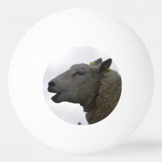 干し草でChompingヒツジ 卓球ボール