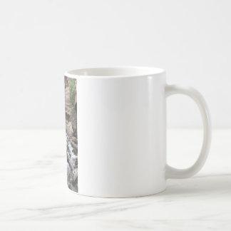 干し草の入り江の滝 コーヒーマグカップ