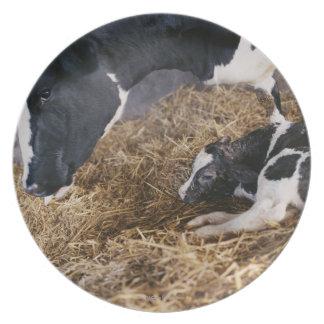 干し草の牛そして子牛 プレート