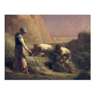 干し草Trussers 1850-51年 ポストカード