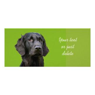 平らな上塗を施してあるレトリーバー犬のしおり ラックカード