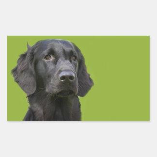 平らな上塗を施してあるレトリーバー犬の黒の美しい写真 長方形シール