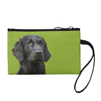 平らな上塗を施してあるレトリーバー犬は、黒い足ハートを印刷します コインパース