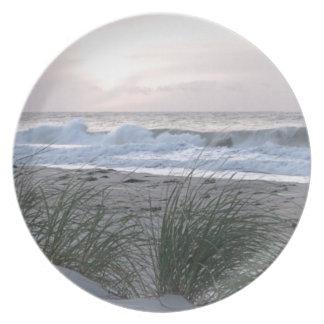 平和および静寂のビーチ プレート