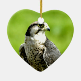 平和に先に見、鳥のfalkのgyrを愛して下さい セラミックオーナメント