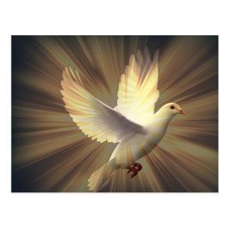 平和の鳩 ポストカード