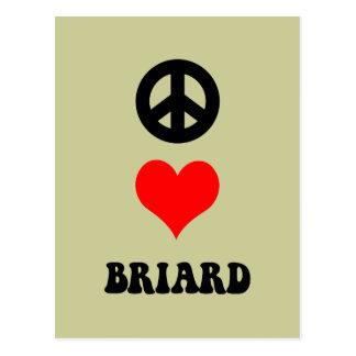 平和愛Briard ポストカード