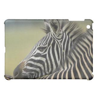 平野のシマウマ(Equusのクアッガ)の組、Hagaのゲーム iPad Miniケース