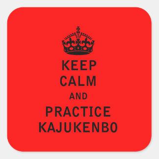 平静および練習Kajukenboを保って下さい スクエアシール