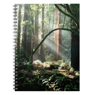 平静の森のノート ノートブック
