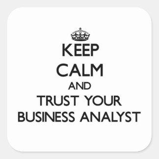 平静を保ち、あなたのビジネス分析者を信頼して下さい スクエアシール