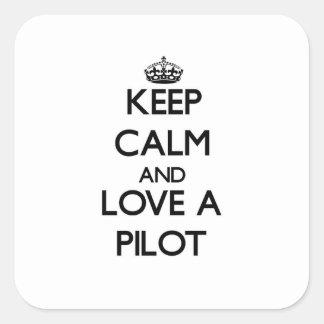 平静を保ち、パイロットを愛して下さい スクエアシール