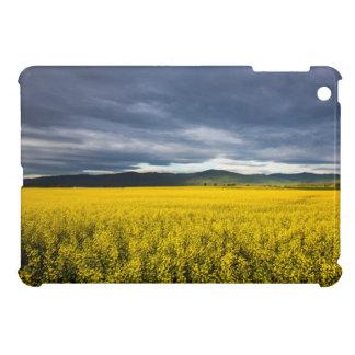 平頭の朝ライトのCanola分野 iPad Mini Case