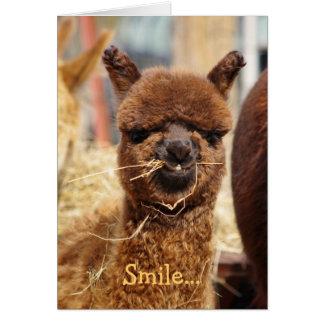 幸せなアルパカカード カード