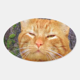 幸せな子猫Kat! 楕円形シール