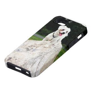 幸せな小犬(世界の王) iPhone SE/5/5s ケース